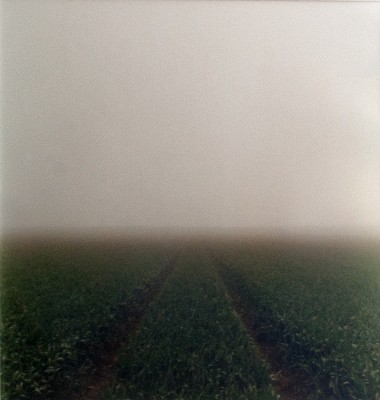 Picture of Path 98 by Iain Stewart