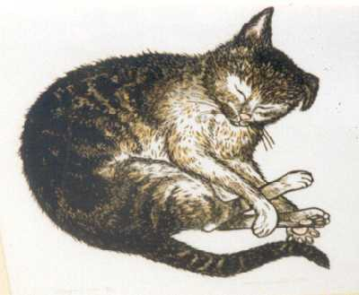 Picture of Sleeping Cat by Mary Wormell