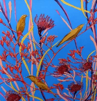 Picture of Kangaroo Paw by Lucie Taylor