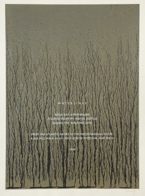 Picture of Waterlines by Richard Long