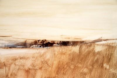Picture of Landscape by Derek Souter