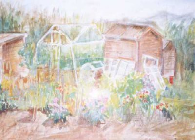 Picture of Inverleith Allotments by Shona McEwan