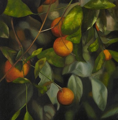 Picture of Oranges by Lynsey Ewan