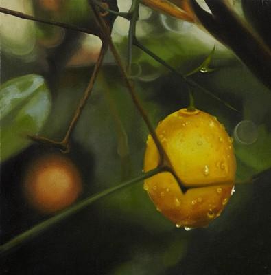 Picture of Lemon by Lynsey Ewan