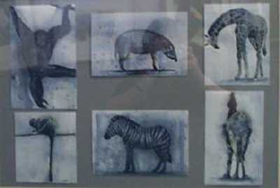 Picture of Watercolour Studies by Allison Young