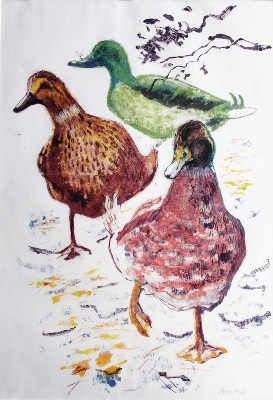 Picture of Waddling Ducks by Anna Ford