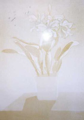 Picture of Cattleya by Gladys McAvoy