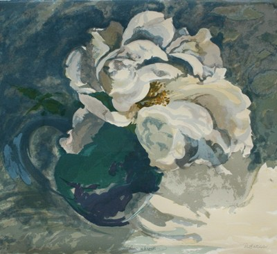 Picture of Paeonia Seagull by Robert W. Batchelor