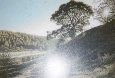 Picture of Light and the Landscape by Tom Davidson