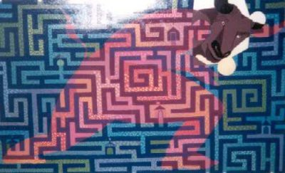 Picture of Myth in a Maze by Linda M. Farquarson