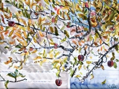 Picture of Little Green Apples III by Derek Green