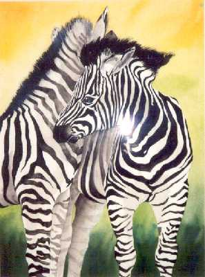 Picture of Two Zebras by Amy Page