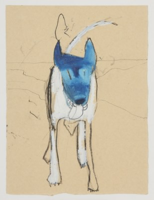 Picture of Coco the Dog by Daisy Richardson