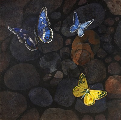 Picture of Butterflies: Resurrection Of Man by Graham Booth