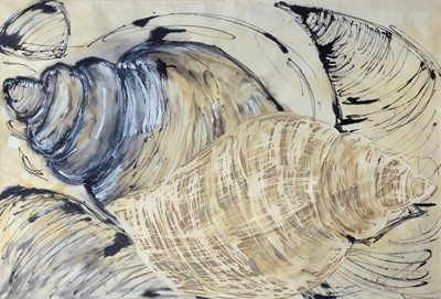 Picture of Shells by Nuala Lancaster