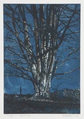 Picture of Moonlit Tree by Tom Davidson